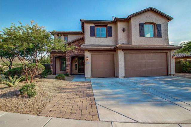 9015 W Molly Lane, Peoria, AZ 85383 (MLS #5623084) :: The Laughton Team