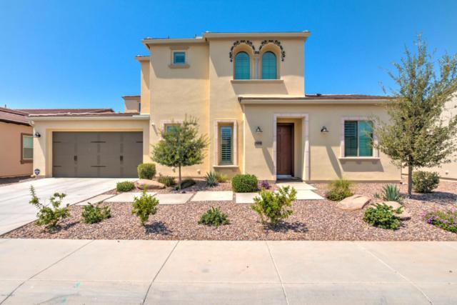 36430 N Crucillo Drive, San Tan Valley, AZ 85140 (MLS #5623106) :: The Bill and Cindy Flowers Team