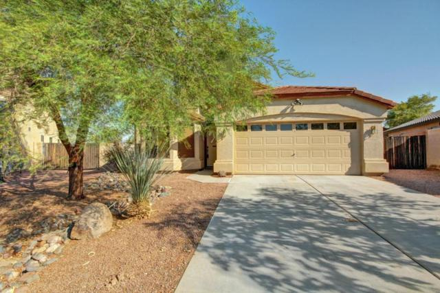 12309 W Georgia Avenue, Litchfield Park, AZ 85340 (MLS #5623112) :: Kelly Cook Real Estate Group