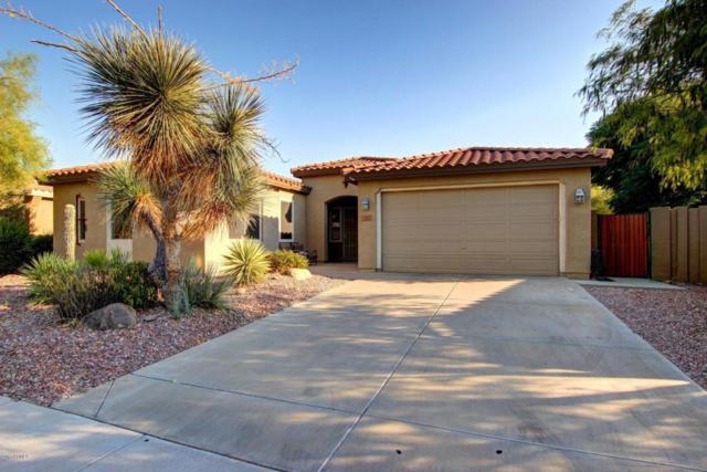 3347 W Owens Way, Anthem, AZ 85086 (MLS #5623135) :: 10X Homes