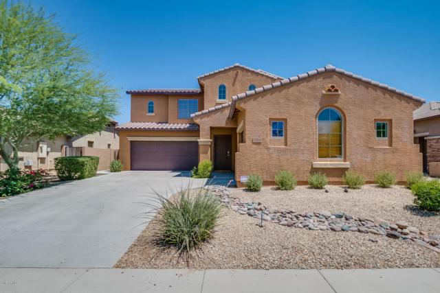 5416 W Novak Way, Laveen, AZ 85339 (MLS #5623176) :: Kelly Cook Real Estate Group