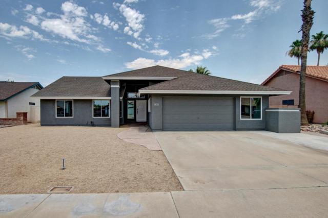 1456 E Brentrup Drive, Tempe, AZ 85283 (MLS #5623186) :: The Bill and Cindy Flowers Team