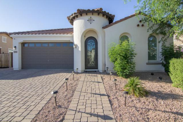 22362 E Cherrywood Drive, Queen Creek, AZ 85142 (MLS #5623209) :: The Bill and Cindy Flowers Team