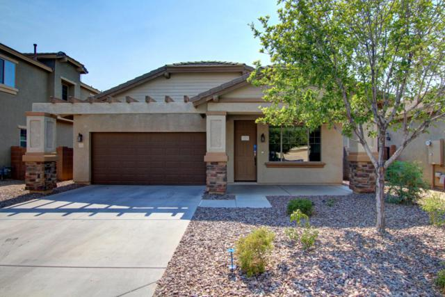 21826 S 215TH Street, Queen Creek, AZ 85142 (MLS #5623218) :: The Bill and Cindy Flowers Team