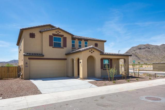 1894 N 214TH Lane, Buckeye, AZ 85396 (MLS #5623220) :: Kelly Cook Real Estate Group