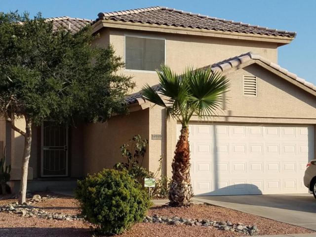 12029 W Columbine Drive, El Mirage, AZ 85335 (MLS #5623267) :: Kelly Cook Real Estate Group