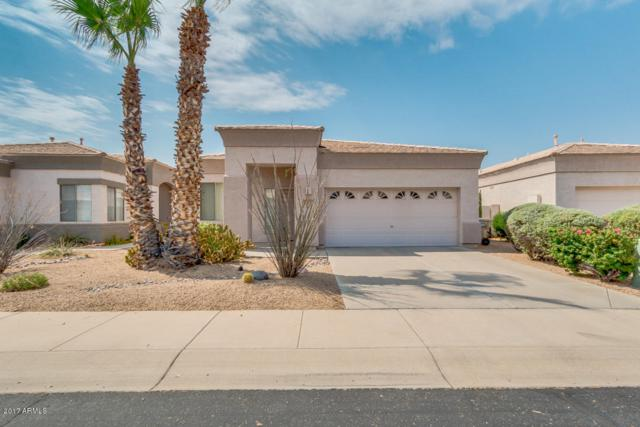 6361 W Blackhawk Drive, Glendale, AZ 85308 (MLS #5623297) :: The Laughton Team