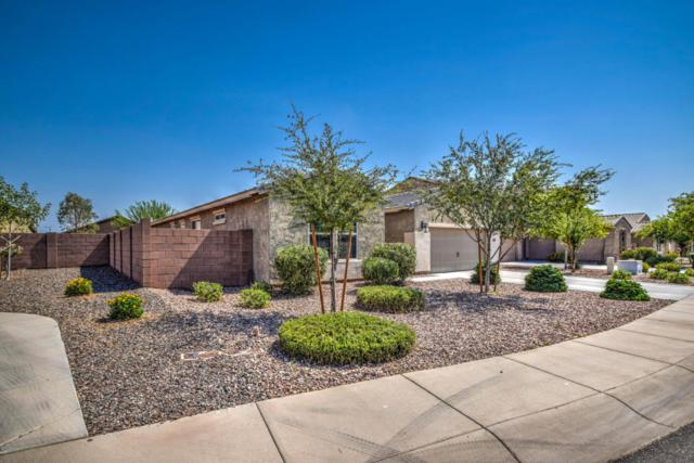 4618 W South Butte Road, Queen Creek, AZ 85142 (MLS #5623383) :: RE/MAX Home Expert Realty