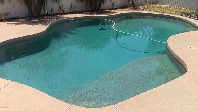 6225 W Blackhawk Drive, Glendale, AZ 85308 (MLS #5623389) :: The Laughton Team