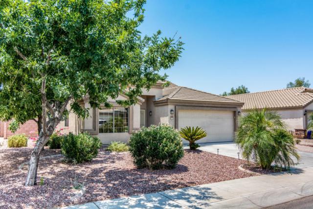 2343 W Hayden Peak Drive, Queen Creek, AZ 85142 (MLS #5623414) :: Kelly Cook Real Estate Group