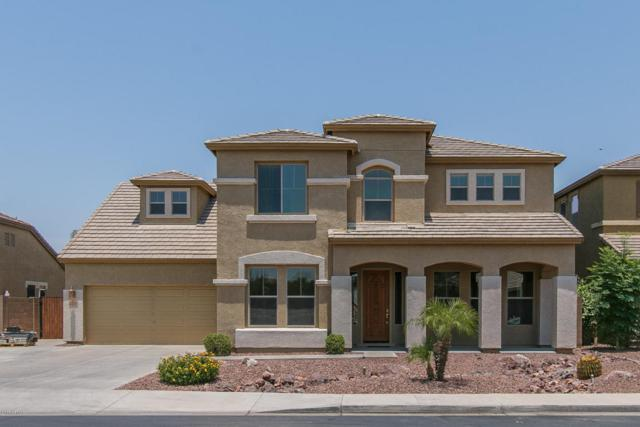 3414 E Sparrow Place, Chandler, AZ 85286 (MLS #5623445) :: The Bill and Cindy Flowers Team