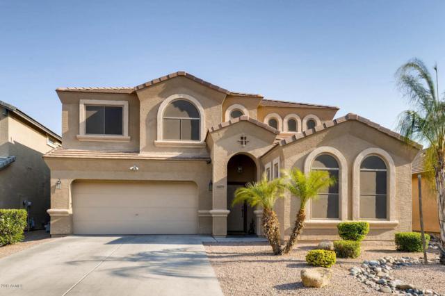 16079 W Williams Street, Goodyear, AZ 85338 (MLS #5623462) :: Kelly Cook Real Estate Group