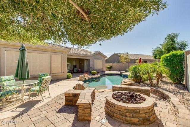 18262 W Sweet Acacia Drive, Goodyear, AZ 85338 (MLS #5623465) :: Kortright Group - West USA Realty