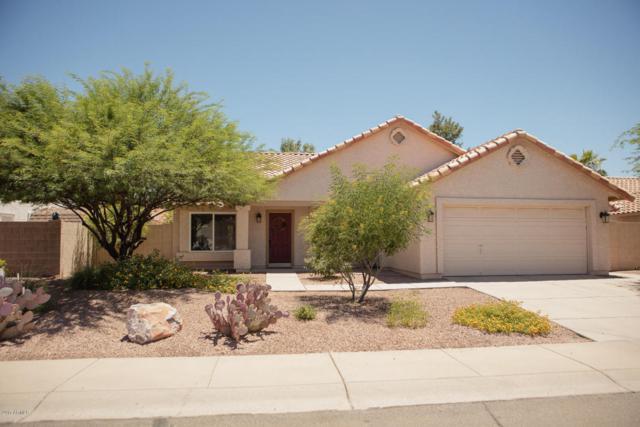 1149 E Encinas Avenue, Gilbert, AZ 85234 (MLS #5623479) :: The Bill and Cindy Flowers Team