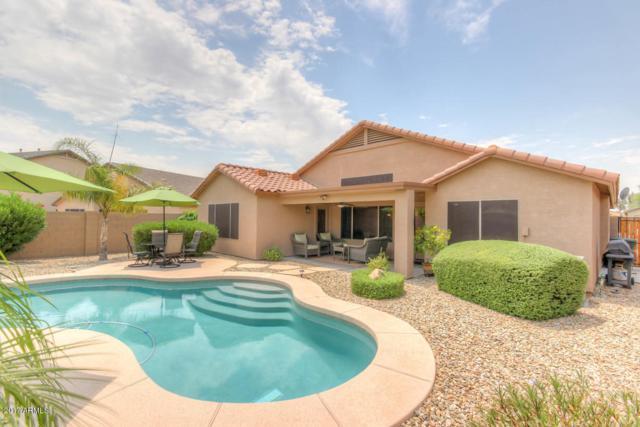 5365 N Ormondo Way, Litchfield Park, AZ 85340 (MLS #5623518) :: Kelly Cook Real Estate Group