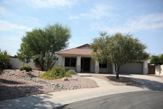 2481 E Geronimo Street, Chandler, AZ 85225 (MLS #5623526) :: The Bill and Cindy Flowers Team