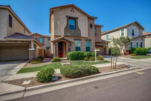 4036 E Carla Vista Drive, Gilbert, AZ 85295 (MLS #5623530) :: The Bill and Cindy Flowers Team