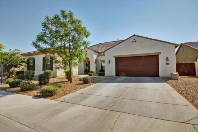 2384 N 161ST Avenue, Goodyear, AZ 85395 (MLS #5623531) :: Kelly Cook Real Estate Group