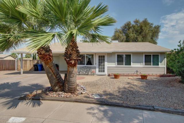 526 N Valencia Place, Chandler, AZ 85226 (MLS #5623536) :: The Bill and Cindy Flowers Team