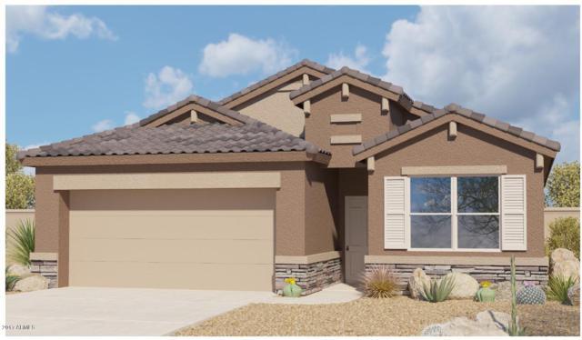 25379 W Heathermoor Drive, Buckeye, AZ 85326 (MLS #5623569) :: Kelly Cook Real Estate Group