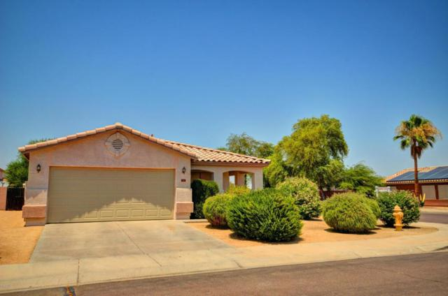 16226 W Adams Street, Goodyear, AZ 85338 (MLS #5623583) :: Kelly Cook Real Estate Group