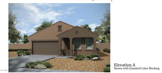 25373 W Heathermoor Drive, Buckeye, AZ 85326 (MLS #5623610) :: Kelly Cook Real Estate Group