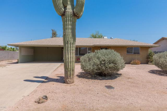 846 E Granada Avenue, Apache Junction, AZ 85119 (MLS #5623655) :: The Bill and Cindy Flowers Team
