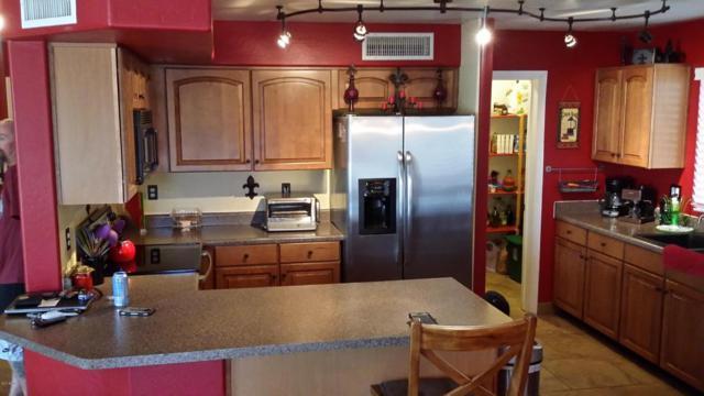 11630 N 151ST Lane, Surprise, AZ 85379 (MLS #5623691) :: Kelly Cook Real Estate Group
