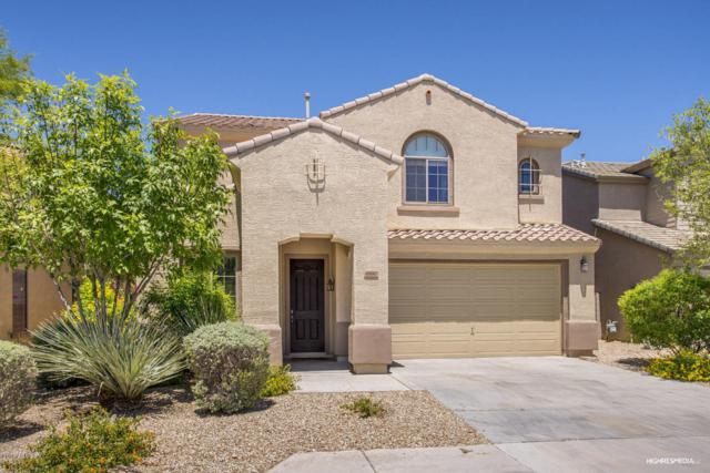 6880 W Ridgeline Road, Peoria, AZ 85383 (MLS #5623701) :: Kelly Cook Real Estate Group