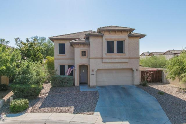 42901 N Hudson Court, Anthem, AZ 85086 (MLS #5623737) :: 10X Homes