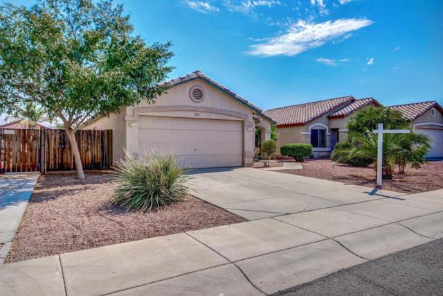15023 W Hearn Road, Surprise, AZ 85379 (MLS #5623740) :: Kelly Cook Real Estate Group
