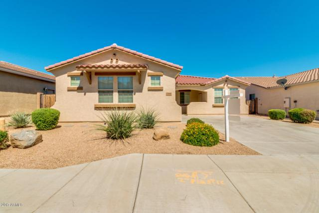 27537 N 92ND Lane, Peoria, AZ 85383 (MLS #5623754) :: Kelly Cook Real Estate Group