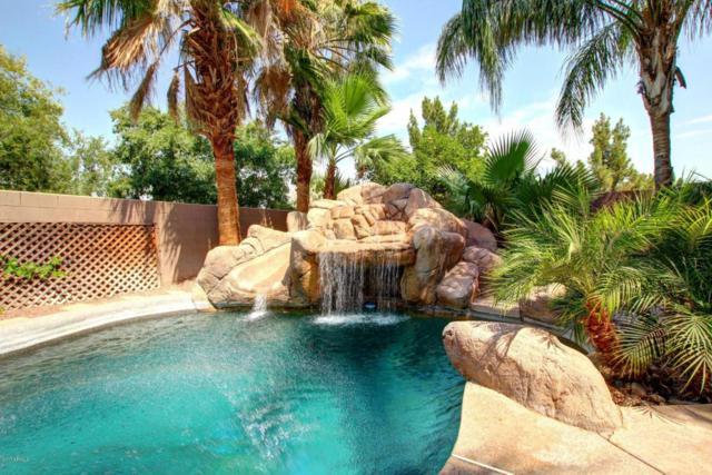448 N Cambridge Street, Gilbert, AZ 85233 (MLS #5623756) :: Kelly Cook Real Estate Group