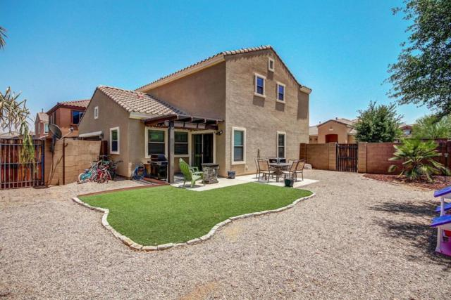 1646 S Martingale Road, Gilbert, AZ 85295 (MLS #5623770) :: Kelly Cook Real Estate Group