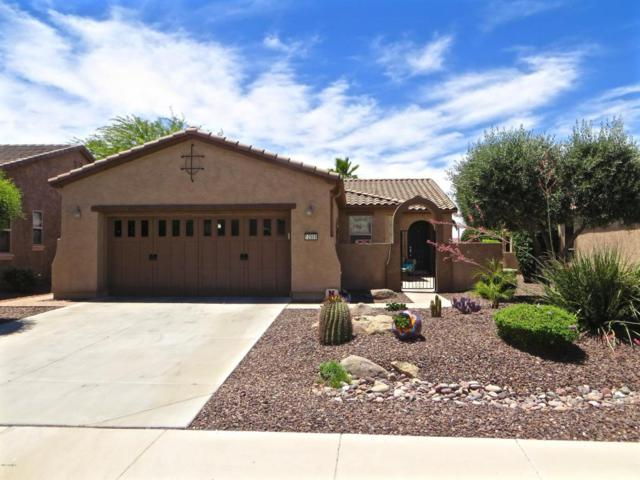 12989 W Plum Road, Peoria, AZ 85383 (MLS #5623793) :: Kelly Cook Real Estate Group