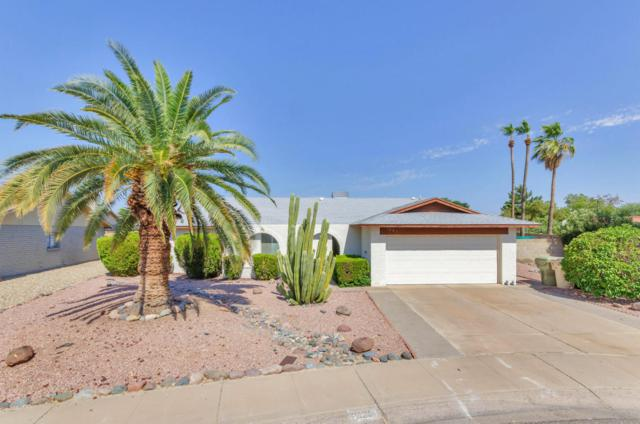 5223 W Via Camille, Glendale, AZ 85306 (MLS #5623799) :: Kelly Cook Real Estate Group