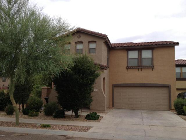 17146 N 184TH Drive, Surprise, AZ 85374 (MLS #5623814) :: Kelly Cook Real Estate Group
