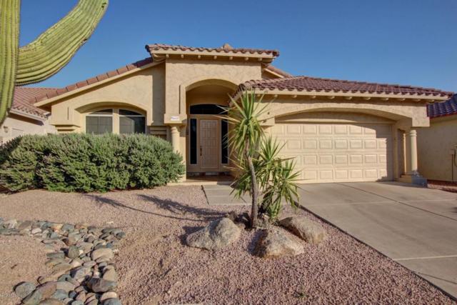 4437 E Rancho Caliente Drive, Cave Creek, AZ 85331 (MLS #5623850) :: 10X Homes