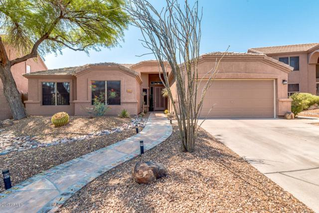 26254 N 46TH Street, Phoenix, AZ 85050 (MLS #5623858) :: Occasio Realty