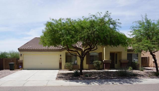 3929 N Dead Wood Drive, Casa Grande, AZ 85122 (MLS #5623884) :: RE/MAX Home Expert Realty
