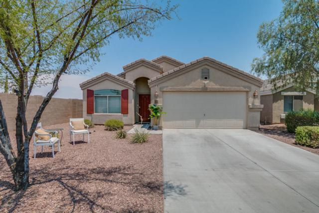 23745 N El Frio Court, Sun City, AZ 85373 (MLS #5623971) :: Occasio Realty
