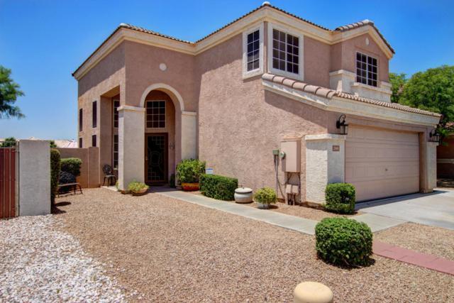 2568 N 131ST Lane, Goodyear, AZ 85395 (MLS #5623977) :: Occasio Realty