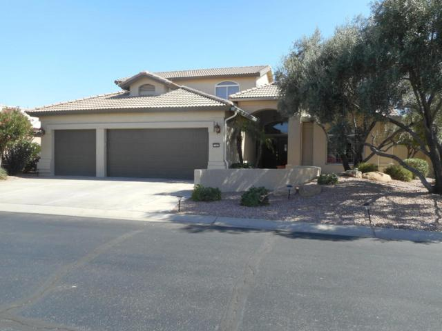 15007 W Pinchot Avenue, Goodyear, AZ 85395 (MLS #5623981) :: Occasio Realty
