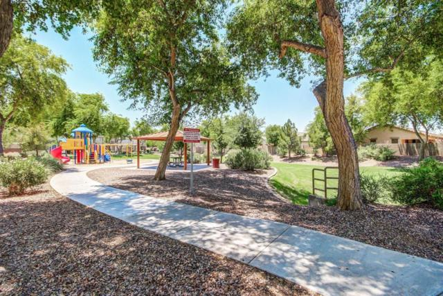 2820 S 100TH Drive, Tolleson, AZ 85353 (MLS #5623999) :: Group 46:10
