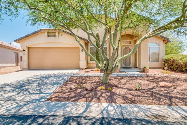9252 E Cedar Basin Lane, Gold Canyon, AZ 85118 (MLS #5624019) :: RE/MAX Home Expert Realty