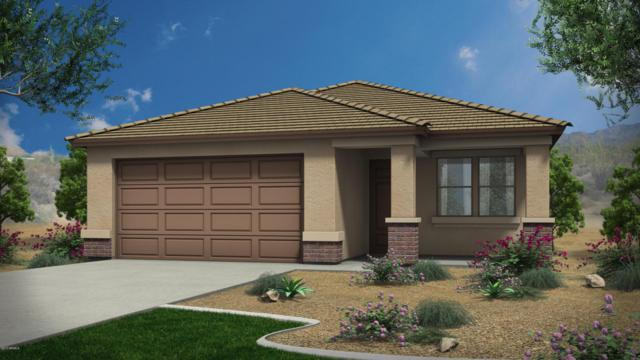 18468 W Via Del Sol, Surprise, AZ 85387 (MLS #5624033) :: Kortright Group - West USA Realty
