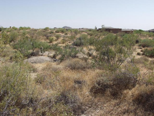 8567 E Black Mountain Road, Scottsdale, AZ 85266 (MLS #5624044) :: The Jesse Herfel Real Estate Group