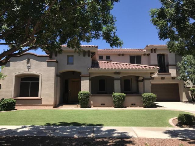 3852 N Park Street, Buckeye, AZ 85396 (MLS #5624105) :: Essential Properties, Inc.