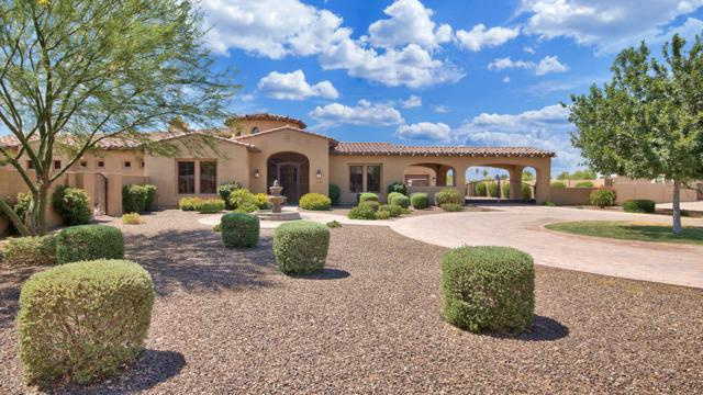 8105 W Frier Drive, Glendale, AZ 85303 (MLS #5624113) :: The Laughton Team