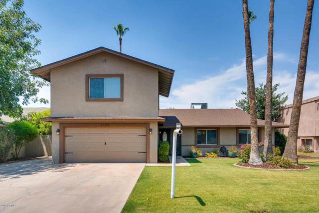 1724 E Manhatton Drive, Tempe, AZ 85282 (MLS #5624115) :: Occasio Realty